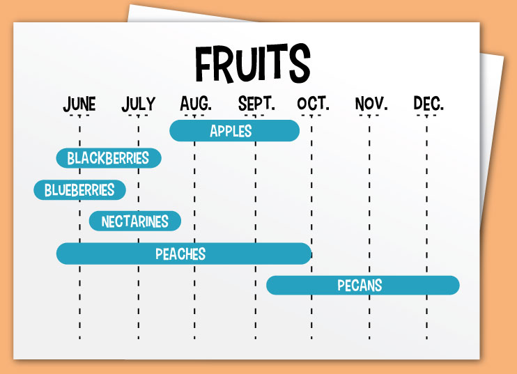 Calendar of when our produce is ready for eating at the Peach Barn Orchard and Bakery in Porter, Oklahoma.