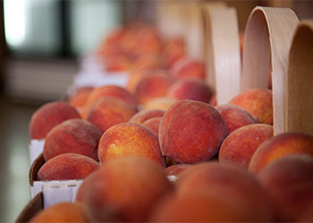 Fresh peaches, produce & farm products at The Peach Barn & Orchard in Porter, Oklahoma